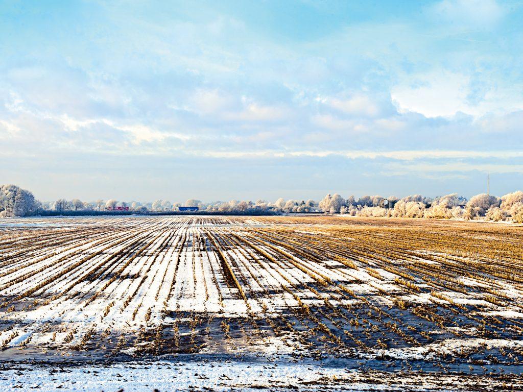 Gefrorene Felder